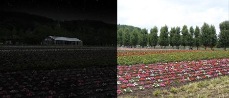 Photoshopで昼写真から夜写真に修正する方法