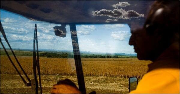 【纽约时报】中国对农田的兴趣令巴西忧虑