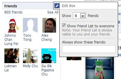 Facebook Friends Box